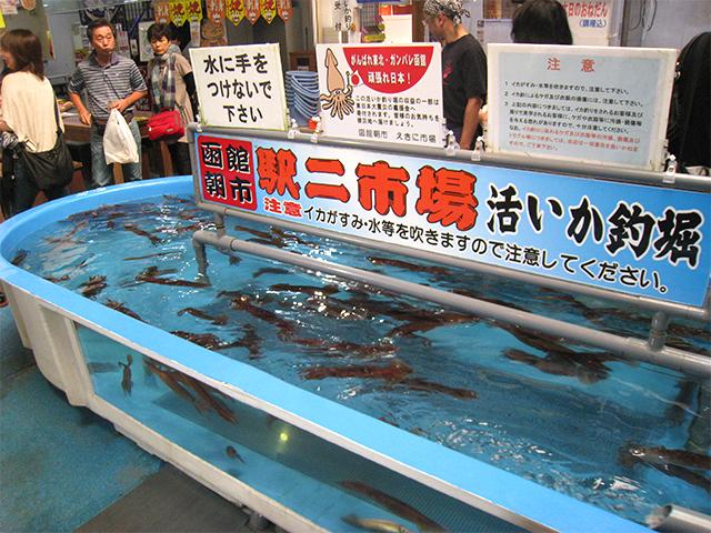 函館朝市で「イカ釣り」体験!新鮮なイカに身も心もとろけそう