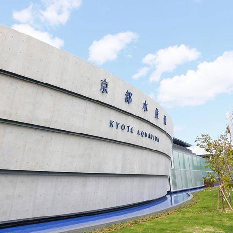 日本最大級の内陸型大規模水族館「京都水族館」の意外な見どころ