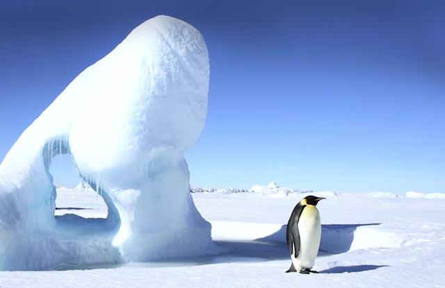 南極に旅行できるか調べてみた
