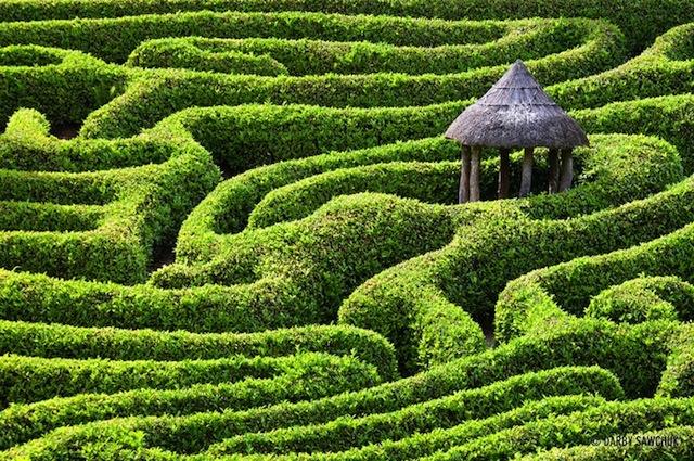 イギリスに行ったら迷い込みたい!迷路のような庭