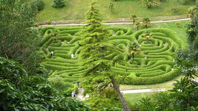 まるで巨大迷路!イギリス「Glendurgan Garden」