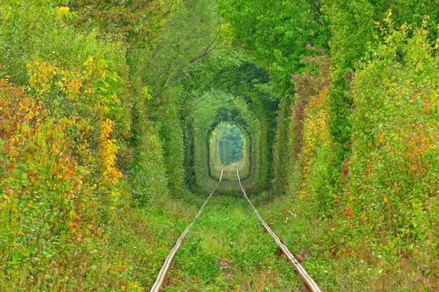 いつか歩きたい、走りたい、世界の美しい道7選