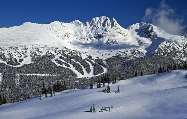 北米最大級のスキーリゾート!ウィスラーに「今」行きたい理由