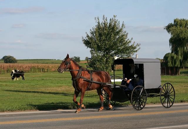 現代文明に頼らず馬車で生活する、「アーミッシュ」の知られざる世界
