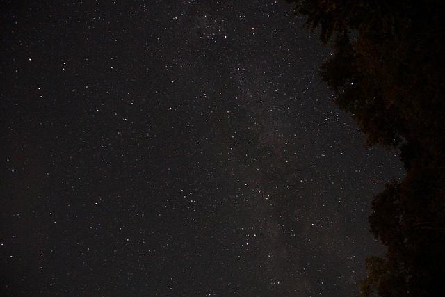 【都会からすぐ】流れ星も見えるかも?広大な星空が美しい関東近郊スポット
