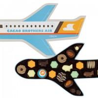 【バレンタイン】飛行機の中身は・・・?旅が好きな人へ贈りたい、粋なチョコ