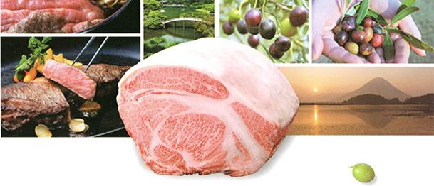 「うどん」だけじゃなかった!香川県の新ブランド「オリーブ牛」に迫る