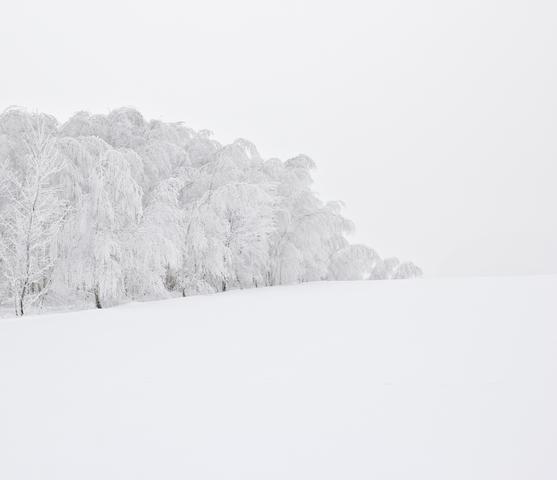 何だか落ち着かない心を包んでくれる、世界の「雪絶景」