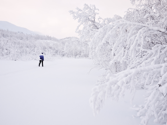 映画「アナと雪の女王」の世界を感じる7つの絶景