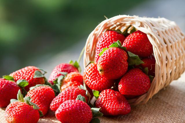まだまだ旬はつづく!真っ赤な「いちご」を味わい尽くす休日のすすめ