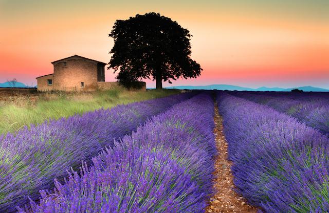 甘美な癒しをくれる、世界の「夕焼け絶景」