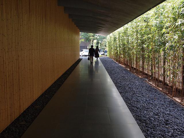 緑揺れる「初夏の庭」に会いに行く。東京の自然散策スポット