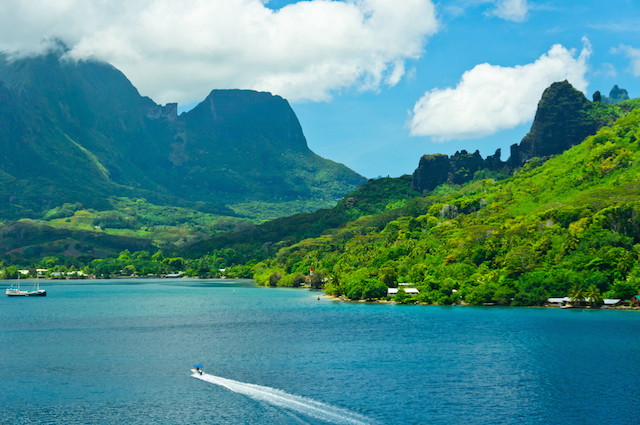 【ポリネシア】イルカとキッス!手付かずの自然が残る「モーレア島」