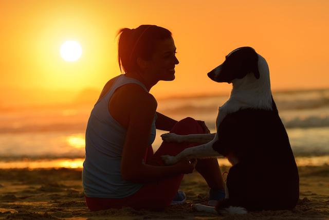いつもキミと一緒だよ。愛犬と本格厄払いのリゾート宿泊プランが登場