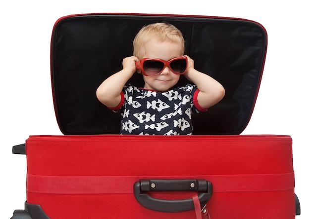 英人気新聞選んだ、「旅行にもってこいのスーツケース」ベスト10!