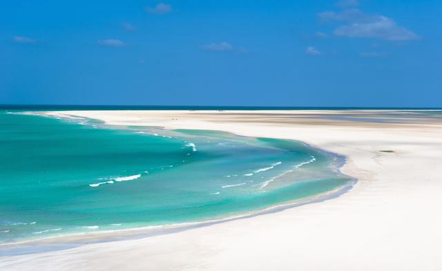 ソコトラ島の画像 p1_20