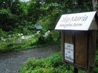 フィリピンの高原「タガイタイ」