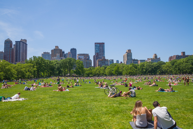 【現地レポート】セントラル・パークでピクニックを最高に楽しむ方法