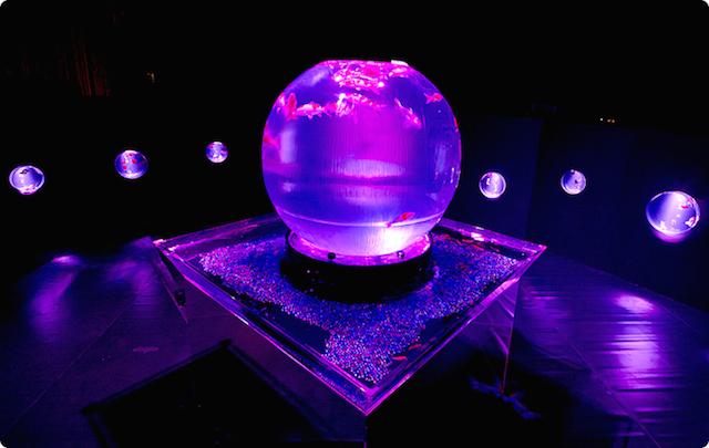 丸い円球型水槽。