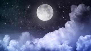 平安時代のお月見を味わえる?日本科学未来館で行われるお月見イベント