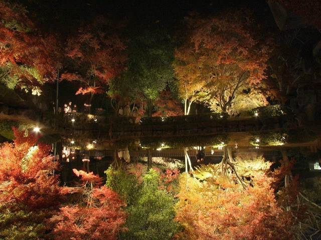 逆さ紅葉が幻想的で凄すぎる!曽木公園のライトアップもみじ祭り