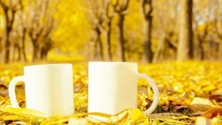 【エリア別・ひと目で分かる】秋の訪れと共に、「カフェオレ前線」がやってくる