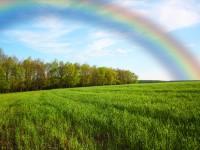見たら幸せになれる。ハワイの夜空に現れる虹「ムーンボウ」