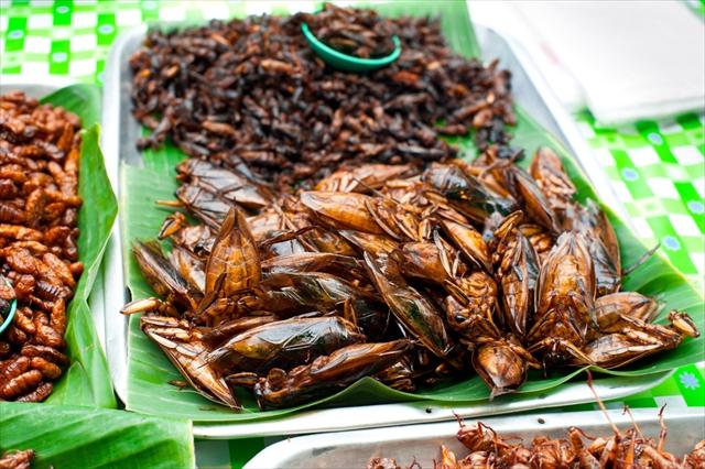 国連も大注目!ディープな「昆虫食」の世界