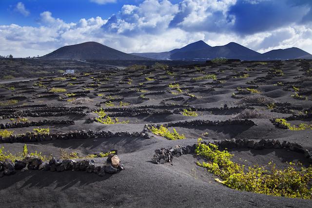 島そのものがアート!自然と人が融合したスペインの火山島「ランサローテ」
