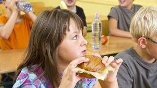 海外の小学生は何を食べているの? 世界の給食を覗いてみよう