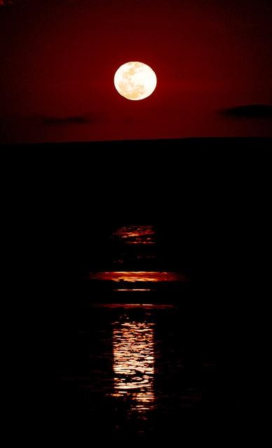 ラクダにゆられ水鏡を渡る・・・神秘的な「月への階段」も