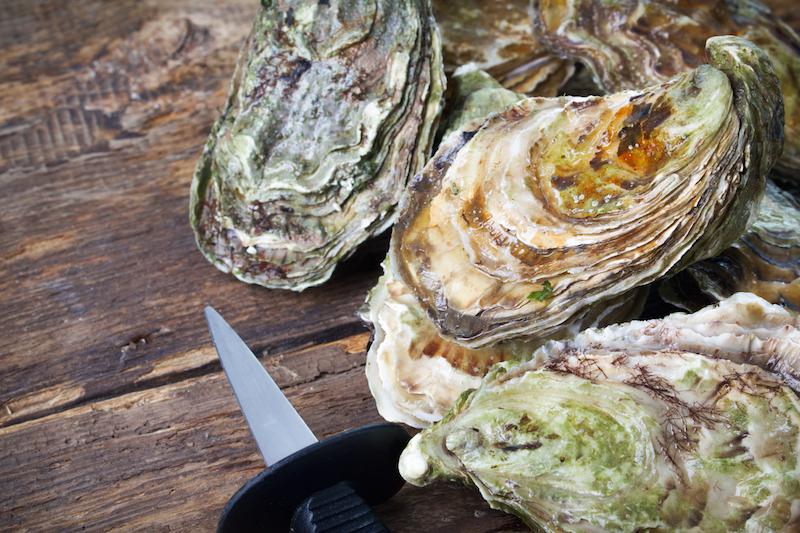 珍しいグリーンオイスターも! 広島カキが思う存分味わえる「牡蠣フェス」