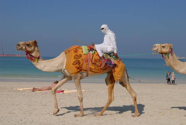 砂漠、ビーチ、大都会を1日で観光!?やっぱりドバイはすごい