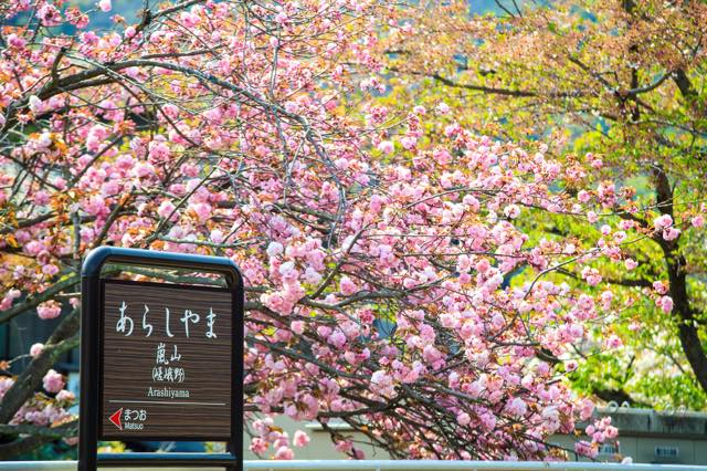 【日本初進出】見晴らしのよさ抜群! ラグジュアリーホテルが京都・嵐山に3月下旬オープン