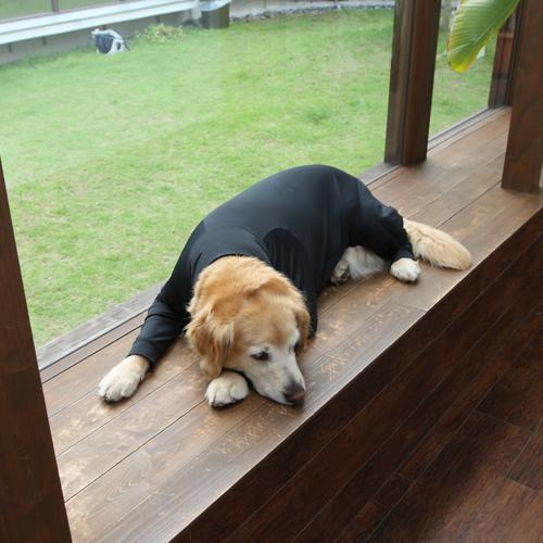 着るだけで疲労回復?運動後の疲れた体のためのリカバリーウェア
