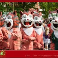[ベルギー]町が猫だらけ!イーペル猫祭り