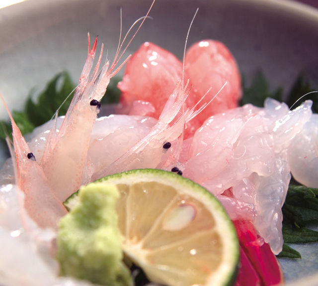 【今が旬】富山湾の「シロエビ」を食べずに魚介類を語るなかれ!