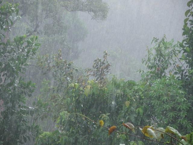 雨の日にメールや会話で使いたい 情緒漂う美しき日本語