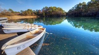 色とりどりの沼が神秘的。初夏の五色沼を歩こう