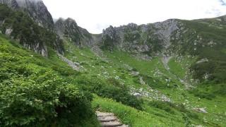 【中央アルプス】ロープウェイで登れる天空のお花畑
