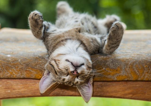 疲れが溜まっている人必見! 梅雨に効果的な「疲労対策」