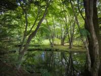 【極上の夏休み】避暑地の王道、軽井沢へ行きたい