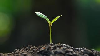 世界中の植物の種を保管するシェルターがノルウェーに