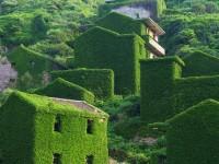 ラピュタのように緑に覆われた神秘的な漁村
