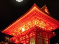 京都でお月見を楽しむならここ 風情溢れるお月見スポット5選