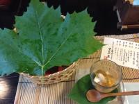 【大人デートも女子会も】250年前の庄屋屋敷でいただく「黒茶屋」ランチ