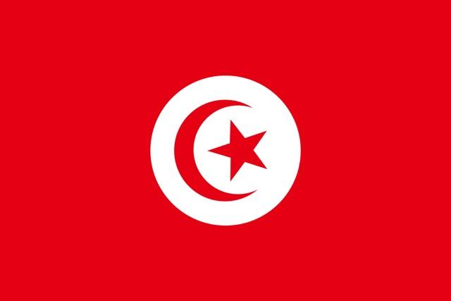 三日月に南十字に横長クロス!知っておくと便利な国旗のモチーフと意味