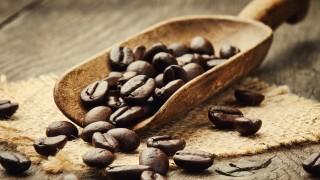 都心でも飲める!小笠原と沖縄で栽培される日本産コーヒー
