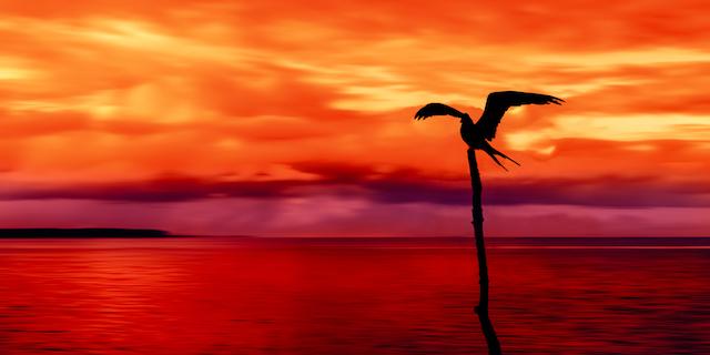 【史上最強カリブの楽園】トリニダード・トバゴへ連れてって