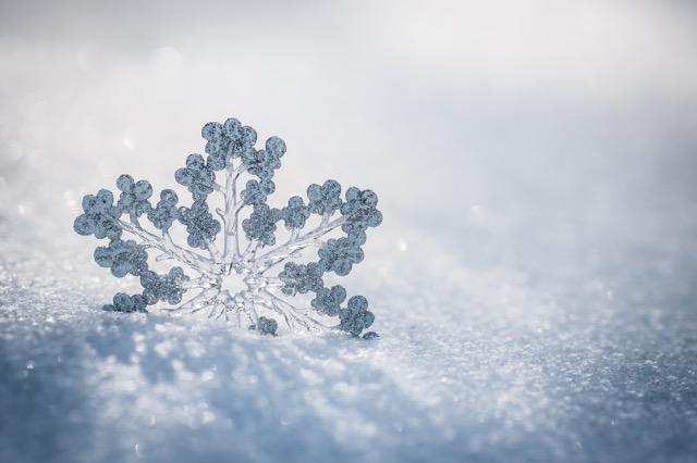 冬に食べたい粉雪みたいなかき氷!雪見亭から期間限定であの信玄餅フレーバーが登場